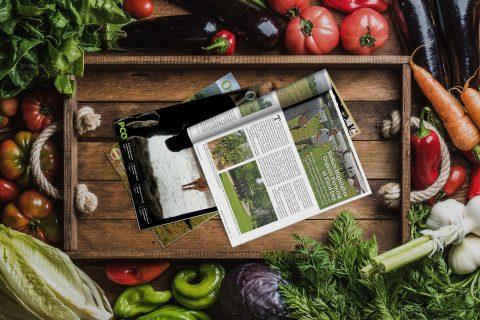 Organic Matters Newsletter
